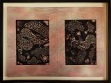 dragons-dsc00281